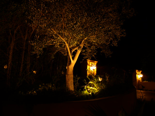 Moorpark Exterior Lighting